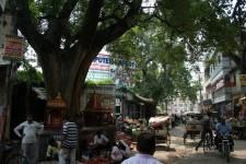 Vns street