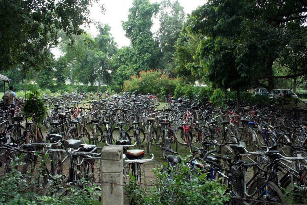 Парковка велосипедов на территории университета